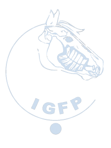 IGFP-Logo
